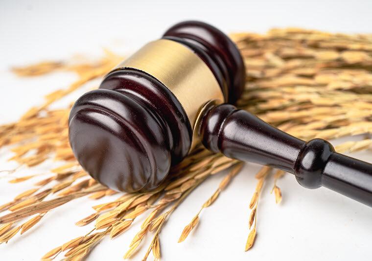 Адвокат по земельних справах