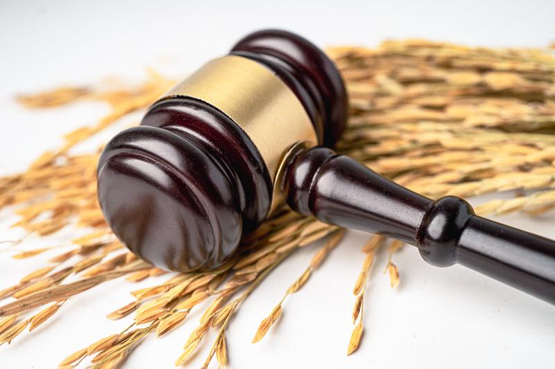 Адвокат по земельным делам